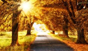 Herbstalle, schwäbische Alb